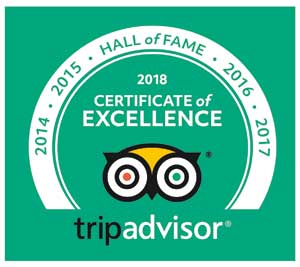 TripAdvisor Hall of Fame, 5 years of Certificates of Excellence for Positano's Palm Harbor